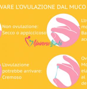 Muco cervicale: come osservarlo per rimanere incinta